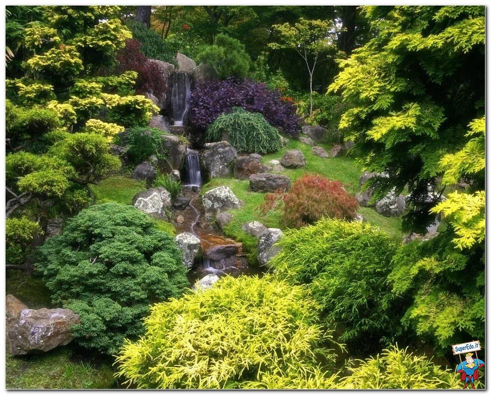 Botanical Gardens 013