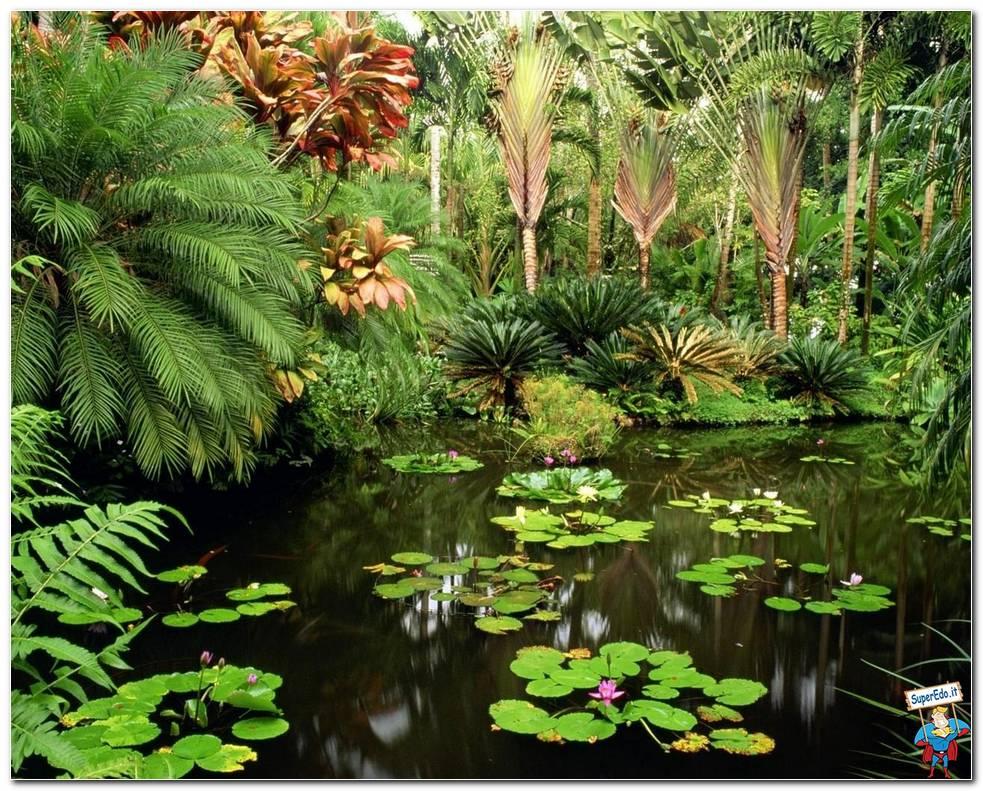 Botanical Gardens 017