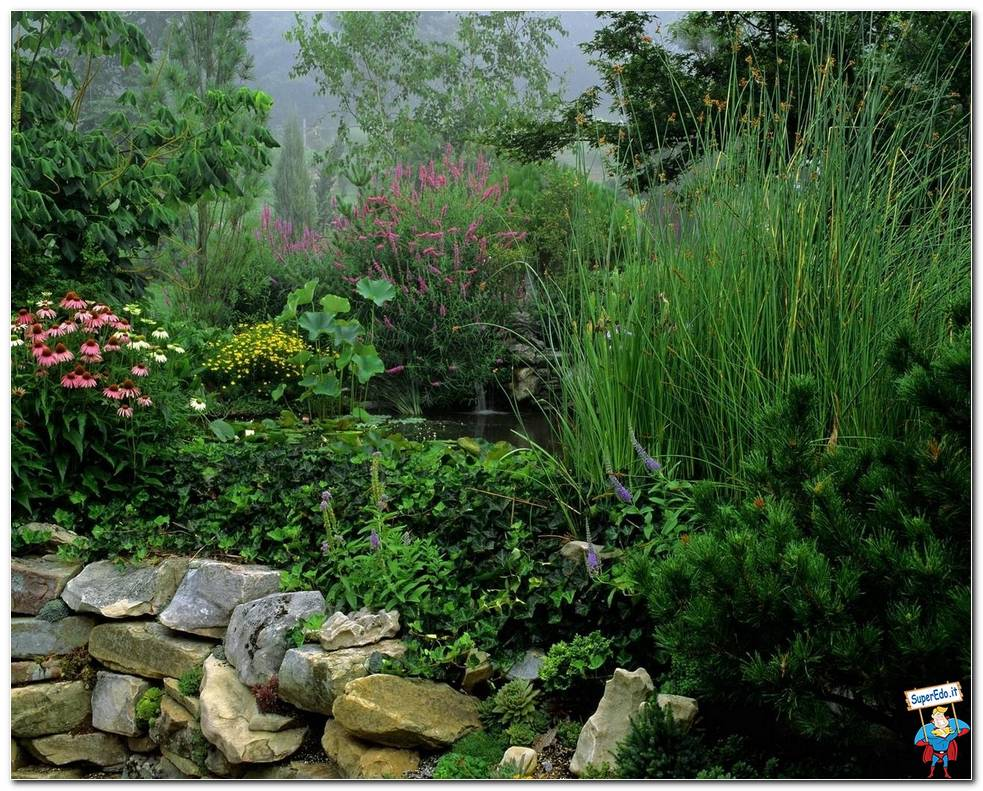 Botanical Gardens 023