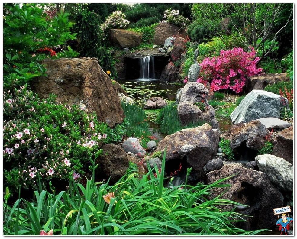 Botanical Gardens 029