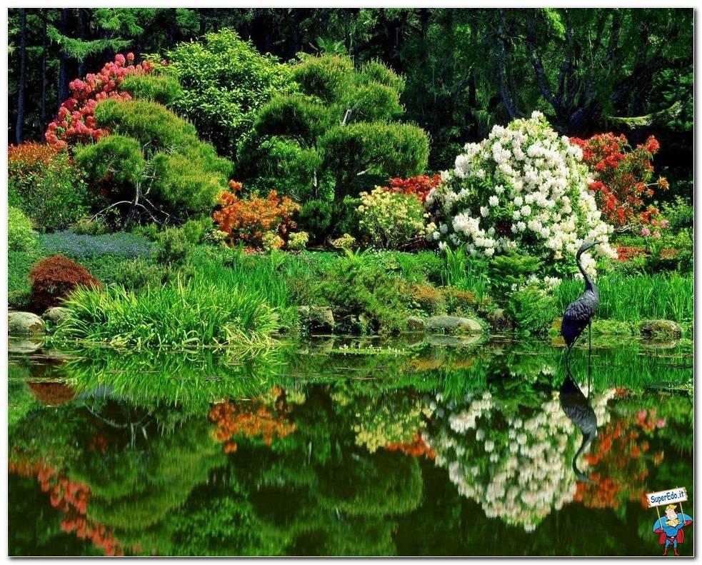 Botanical Gardens 031
