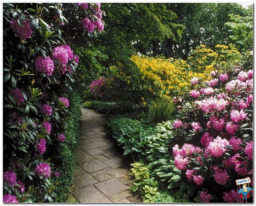 Botanical Gardens 034