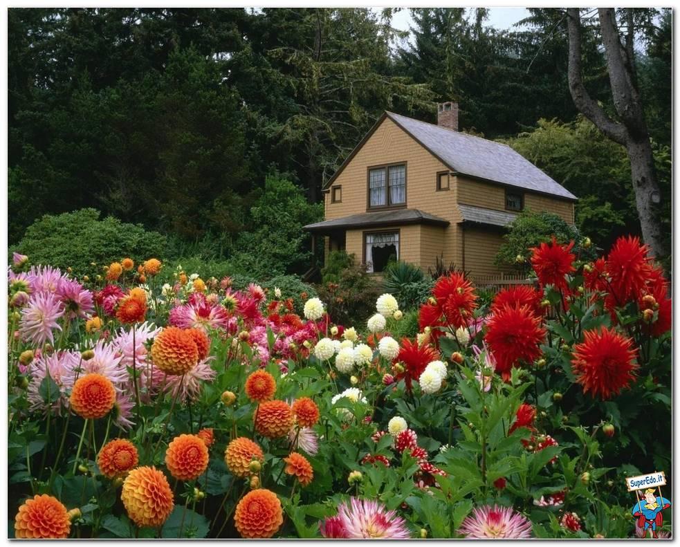Botanical Gardens 039