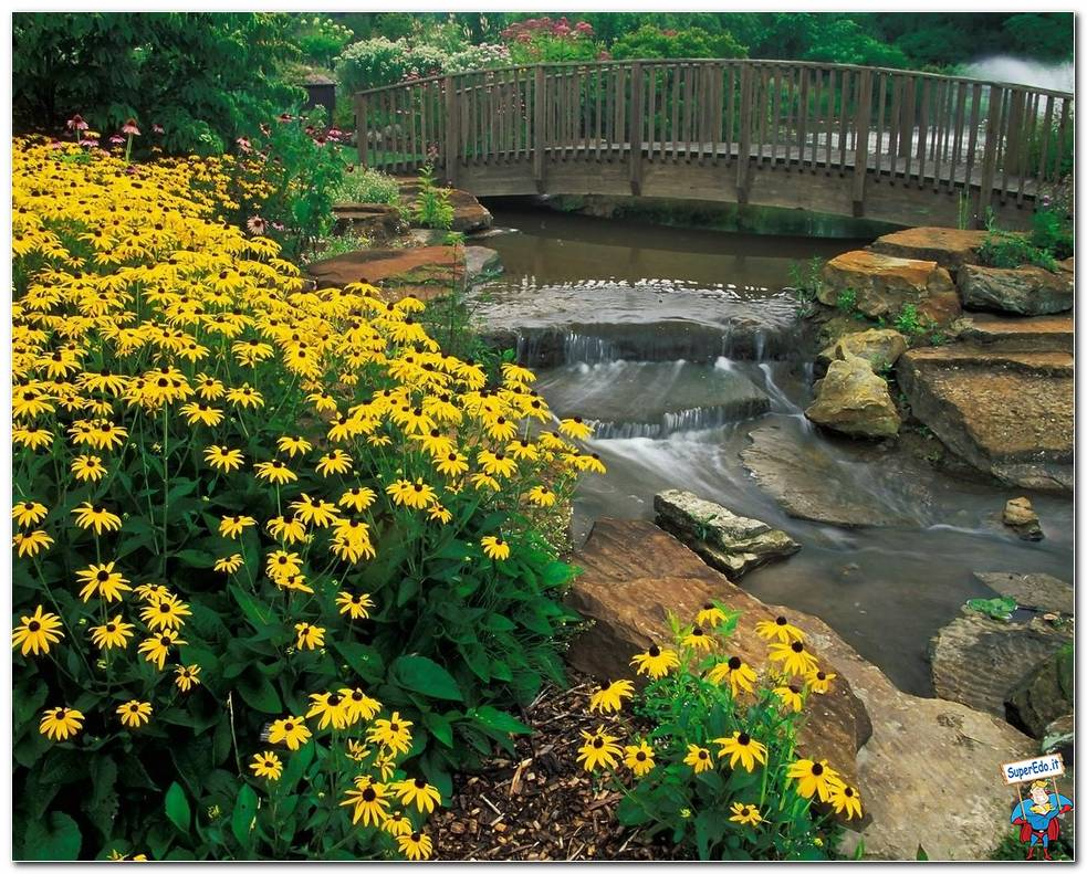 Botanical Gardens 044
