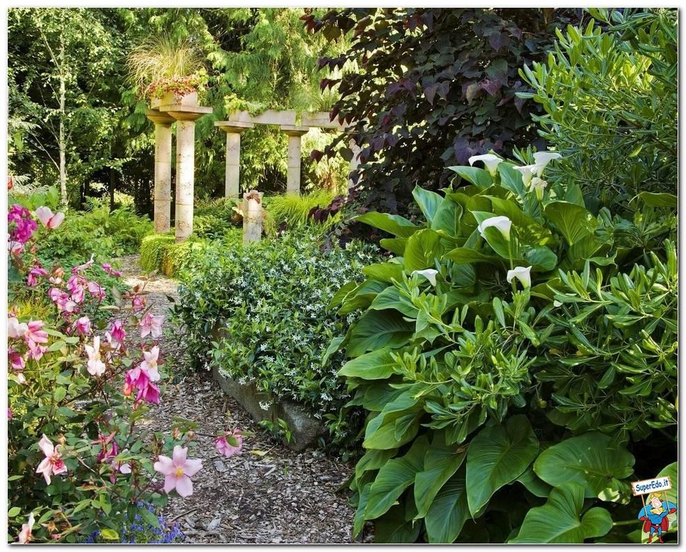 Botanical Gardens 046