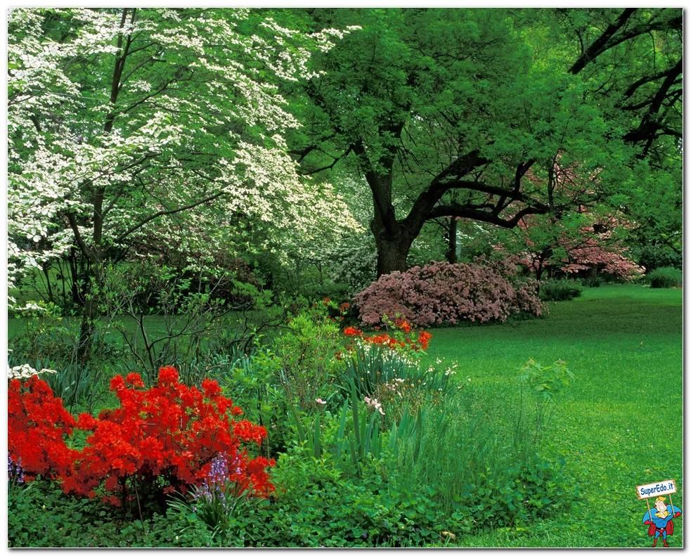 Botanical Gardens 055