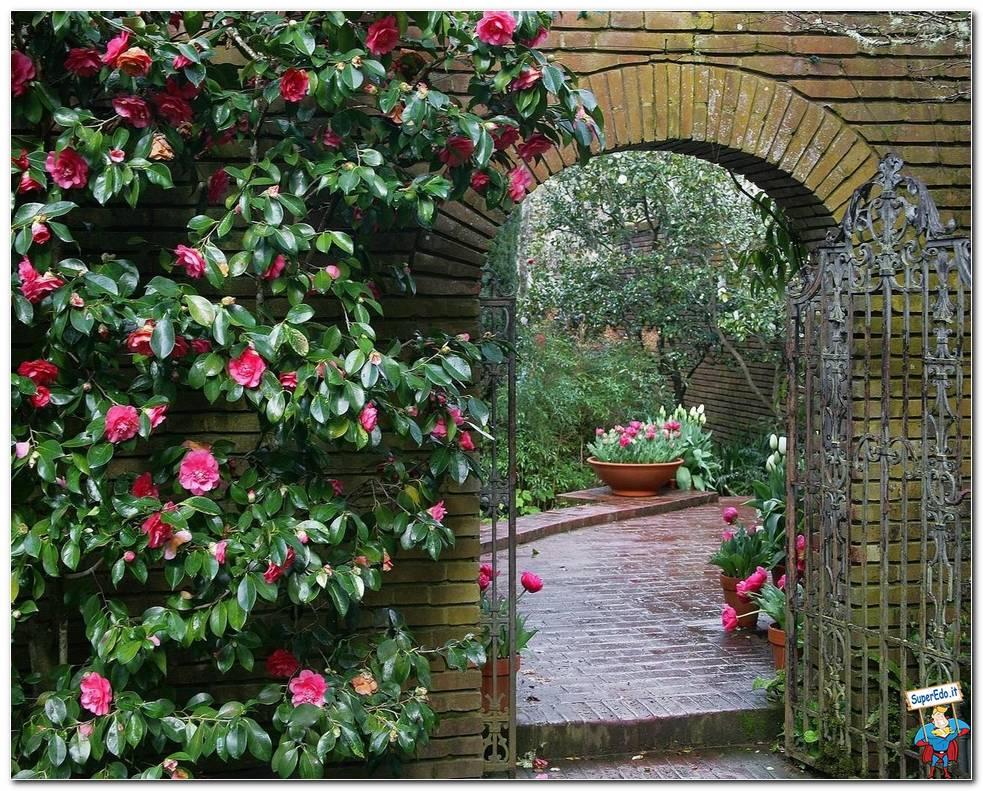 Botanical Gardens 057