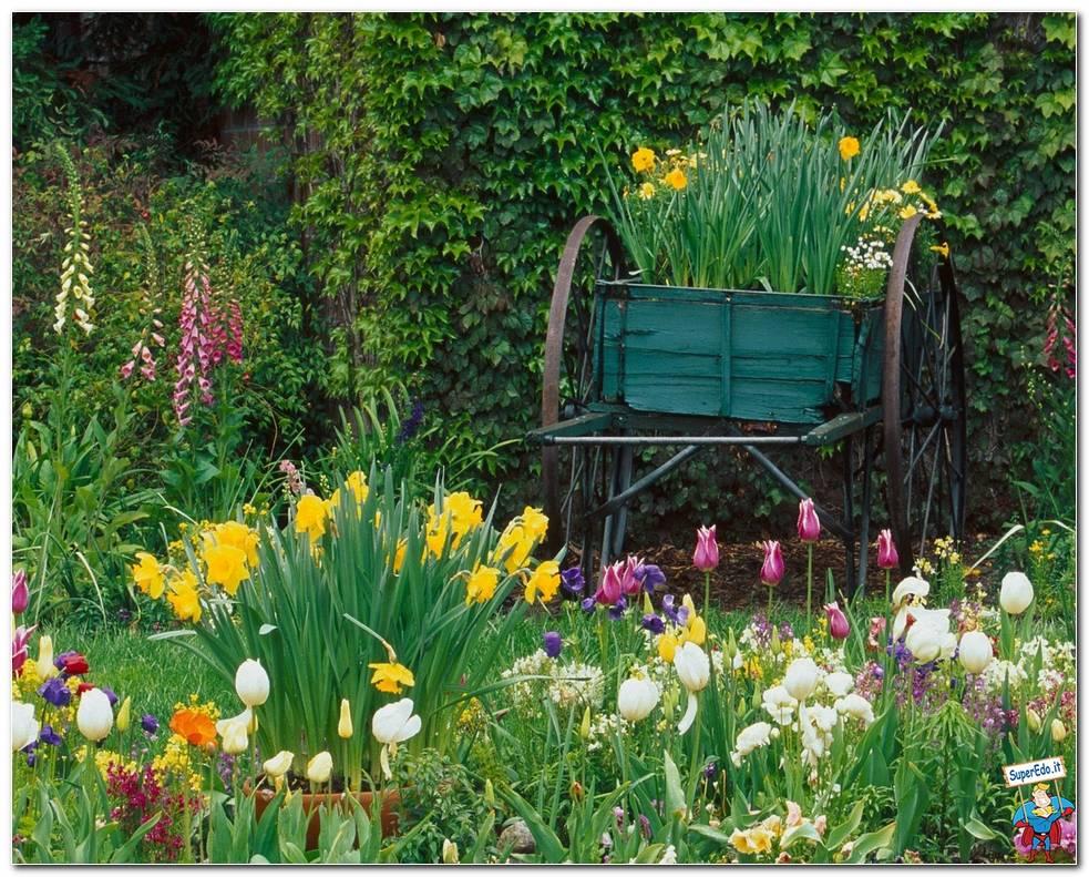Botanical Gardens 060