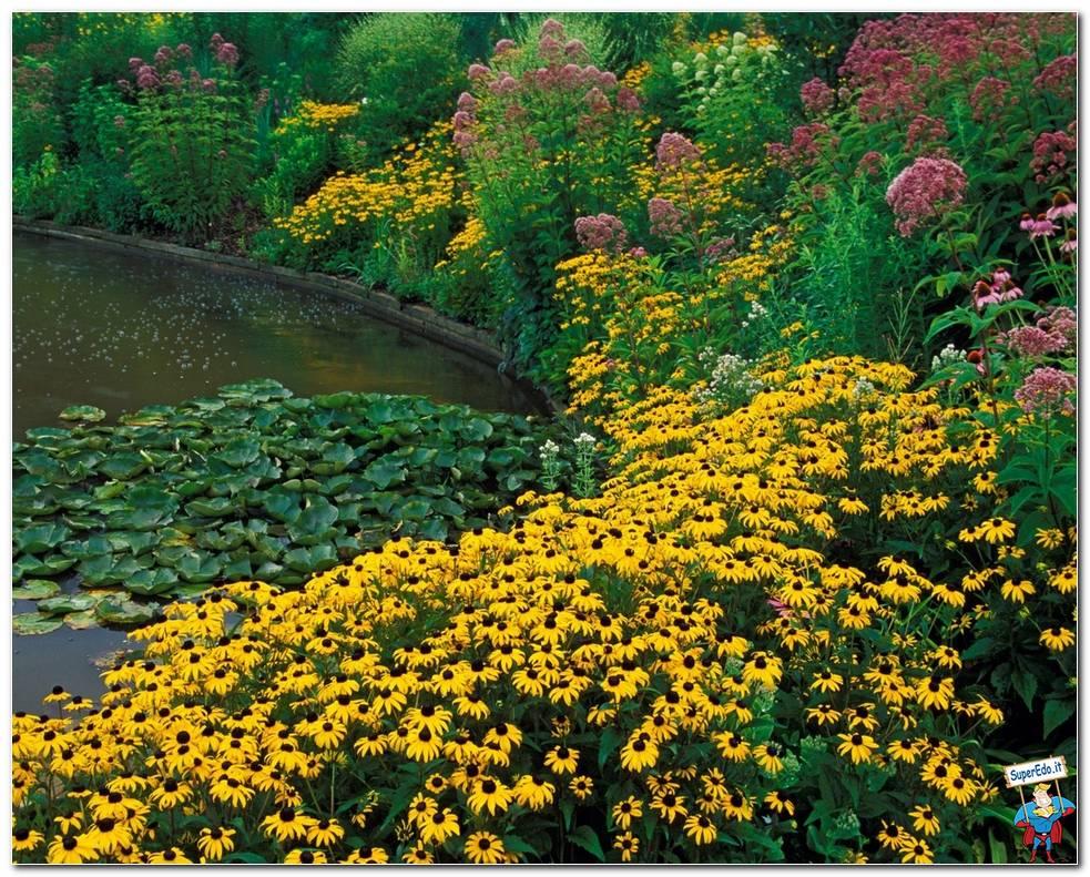 botanical gardens 064