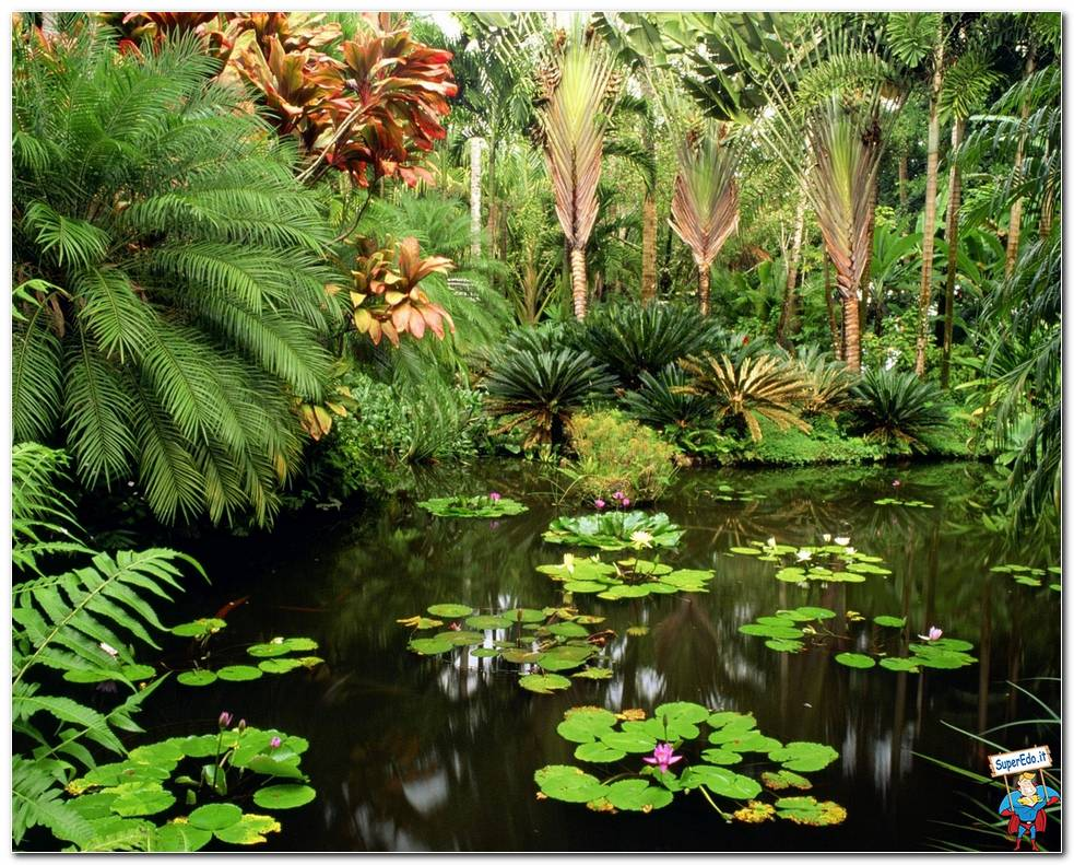 Botanical Gardens 067