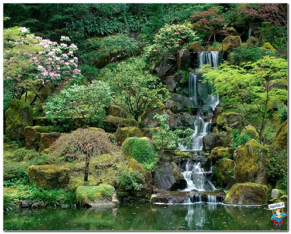 Botanical Gardens 072