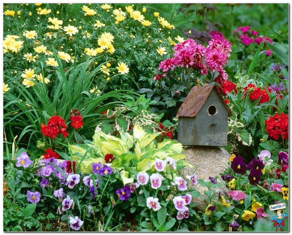 Botanical Gardens 081