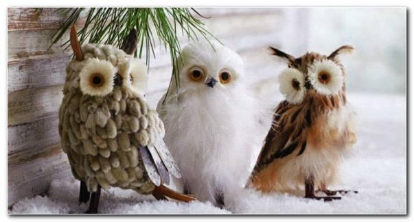 Cosas De Navidad Decoracion Nieve