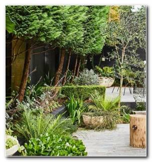 Disneos Jardines Modernos 280x300