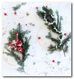 Diy Corona Navidad Ideas Plantas
