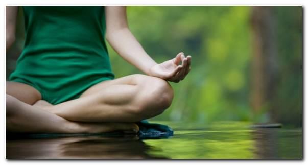 El Yoga Principios Basicos Resized