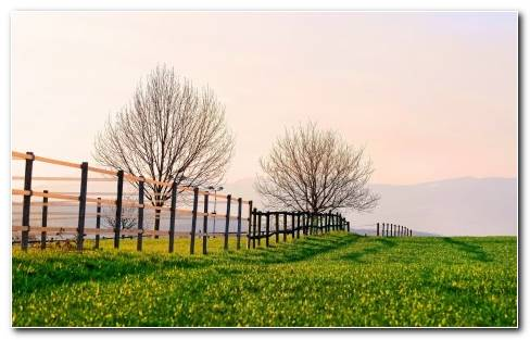 Fence On The Green Field Nature Hd Wallpaper