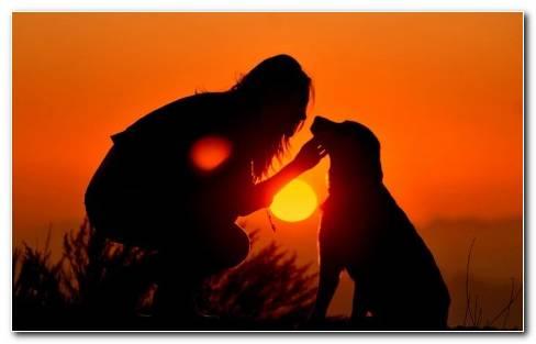 Girl With Dog On Sunset