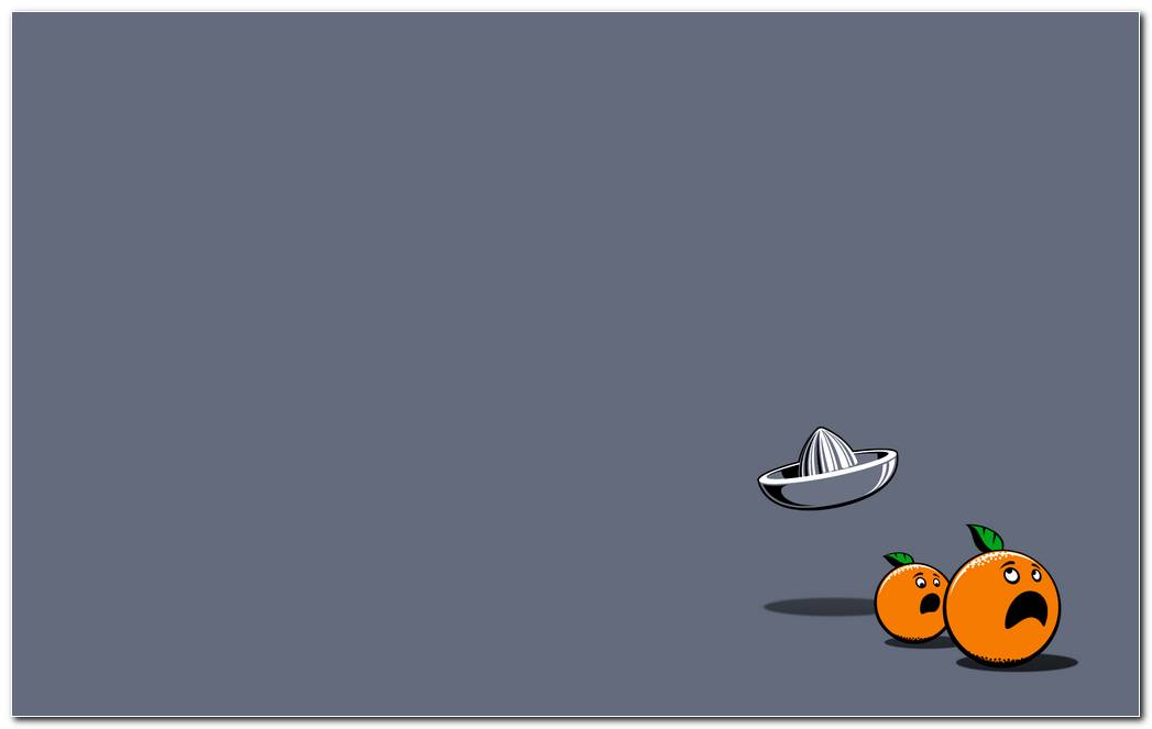 Horrified Oranges Hd Wallpaper