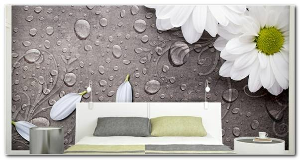 interiores de cuartos flores paredes resized