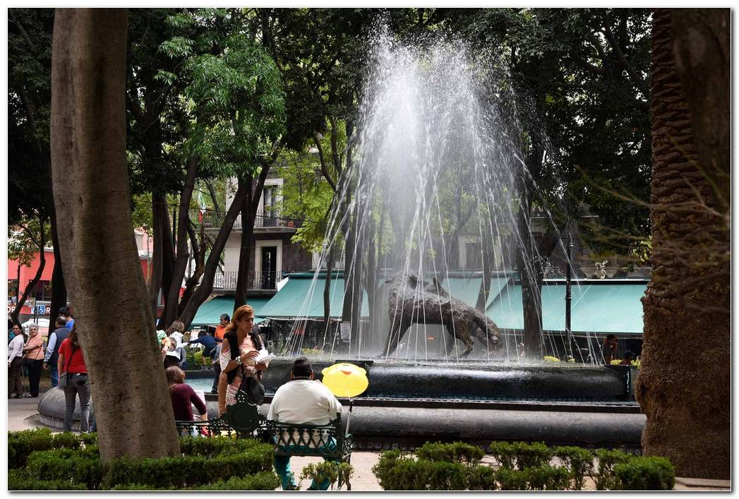 Jardin Centenario 02