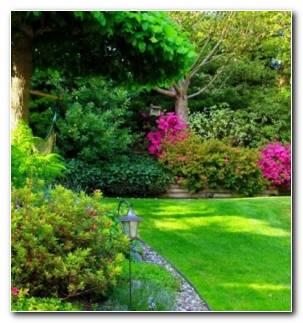 Jardines Pequenos Mantenimiento Plantas Vegetales Resized
