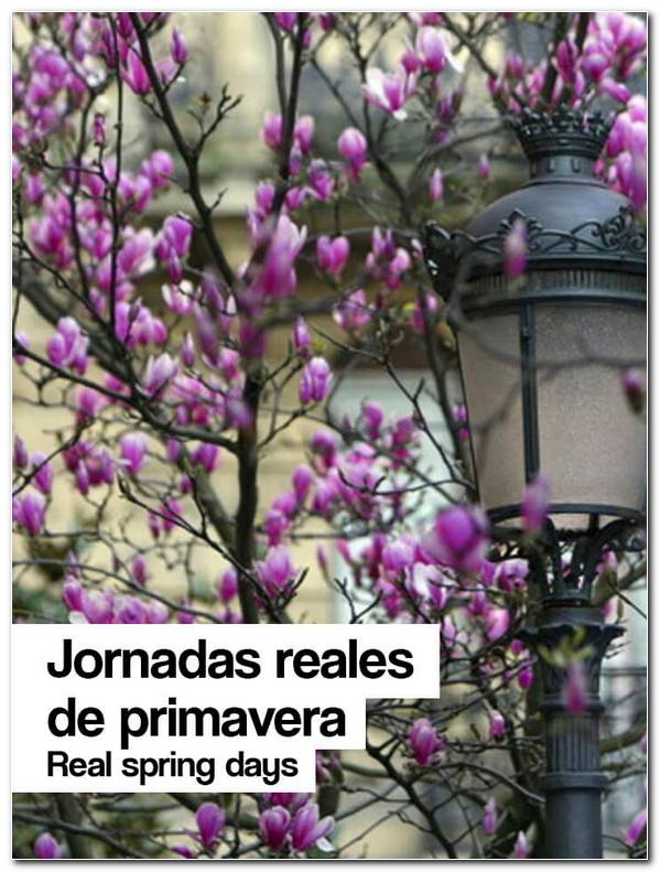 Jornadas Reales De Primavera