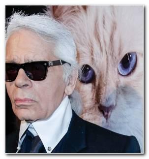 Karl Lagerfeld Vida Muerte