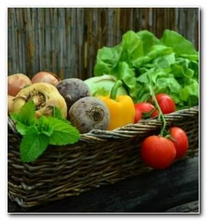 Lista De Verduras Criadas Plantadas Casa Resized
