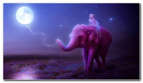 Little Girl On Pink Elephant