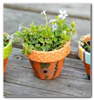 Manualidades Sencillas Jardin Miniatura Macetas