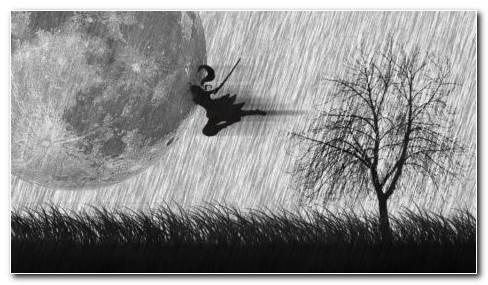 Ninja In The Grass Hd Wallpaper