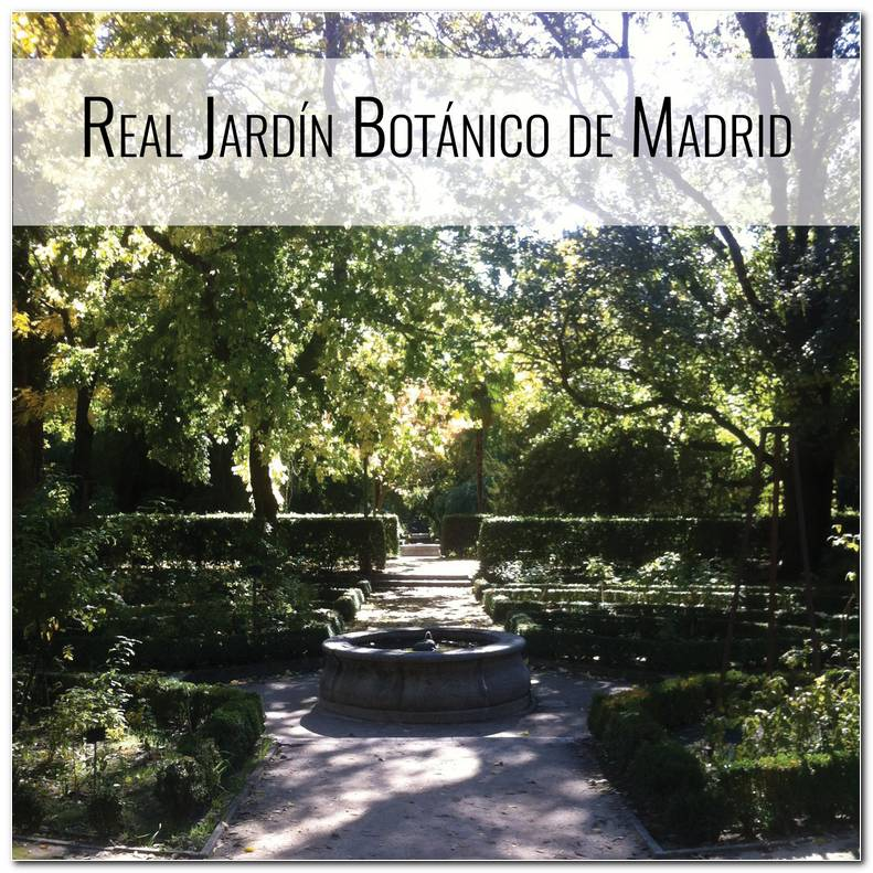 Real Jardicc81n Botacc81nico De Madrid
