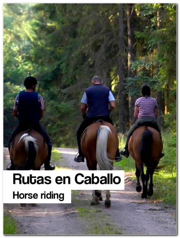 Rutas Caballo
