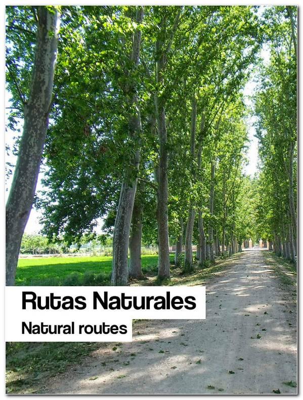 rutas naturales