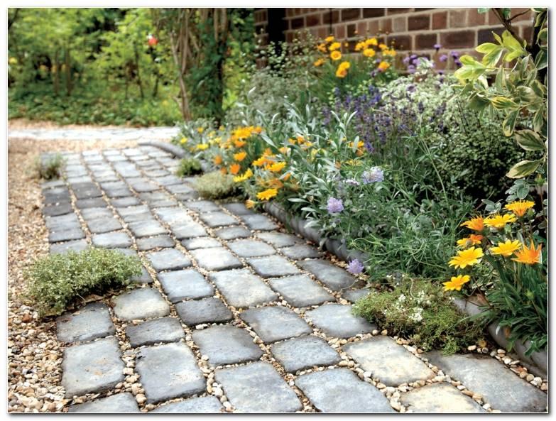 Senderos Camino Disenos Jardin Flores Adoquines Ideas
