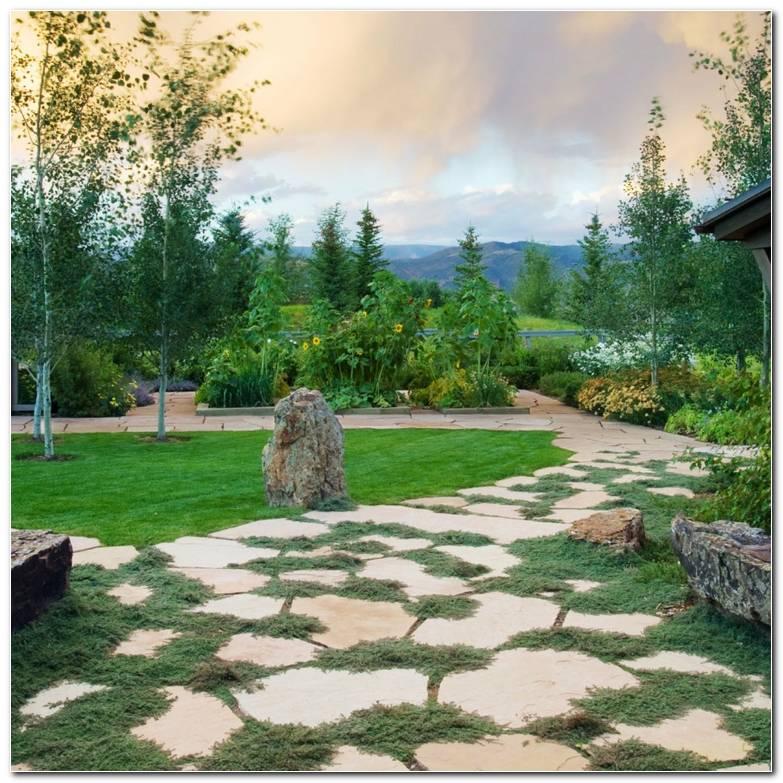 Senderos Camino Disenos Jardin Piedras Grandes Ideas