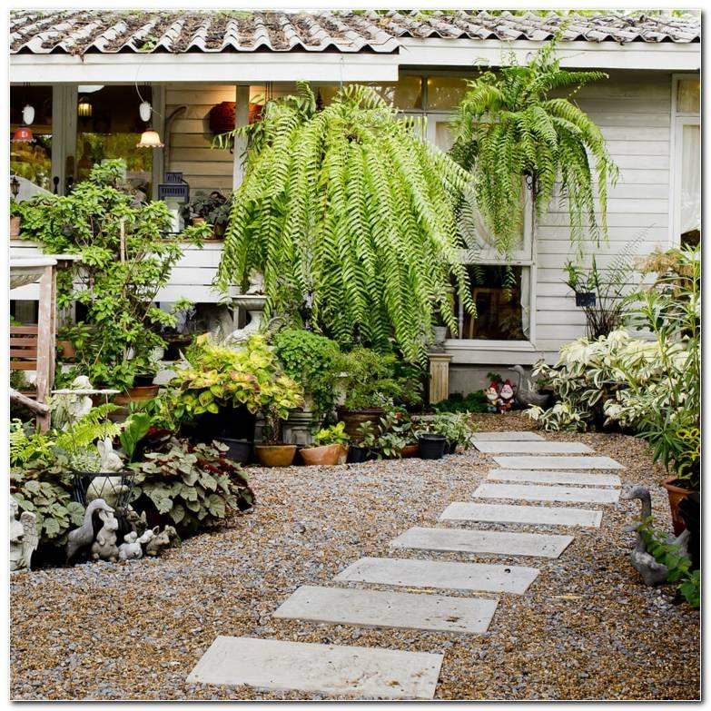 Senderos Camino Jardin Casa Disenada Grava Losas Entrada Ideas
