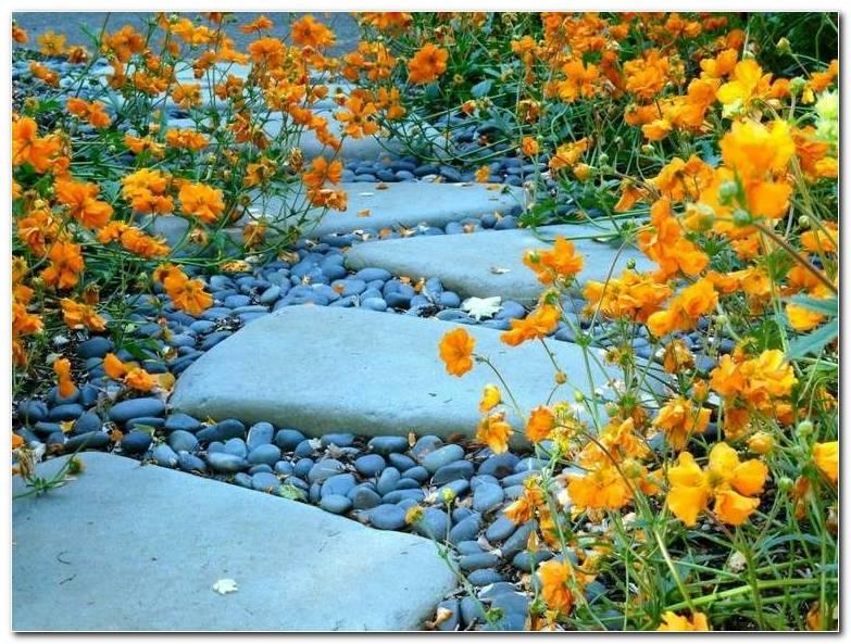 Senderos Camino Jardin Piedras Distintos Tamanos Ideas