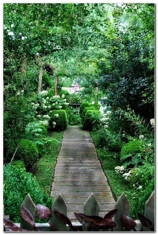 Suelos Senderos Camino Disenos Jardin Encantador Plantas Ideas