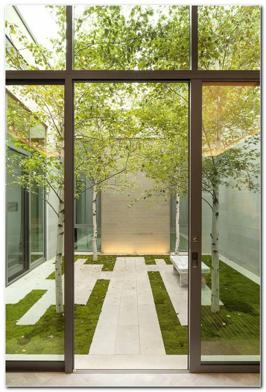 Suelos Senderos Camino Disenos Jardin Urbano Pequeno Ideas