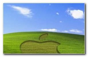 Wallpaper Iphone Kikoosland Apple