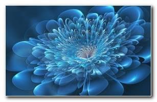 Wallpapers 3d Flowers 3d Wallpaper Images Hidden In Pictures