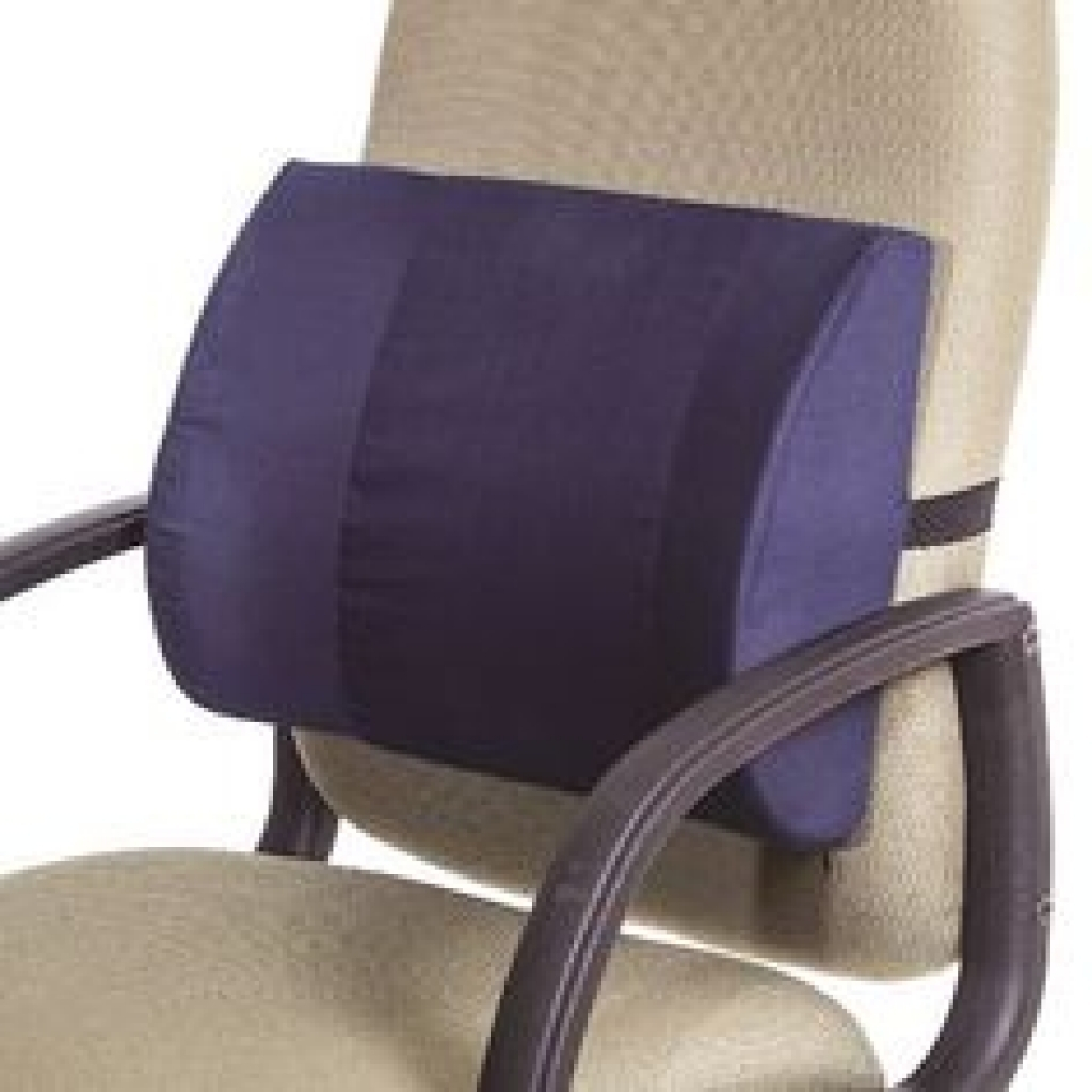 Office Chair Lower Back Support Pillow For Office Chair Best intended for sizing 1024 X 1024