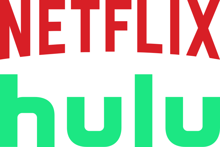 Netflix and Hulu sued for using the internet without permission