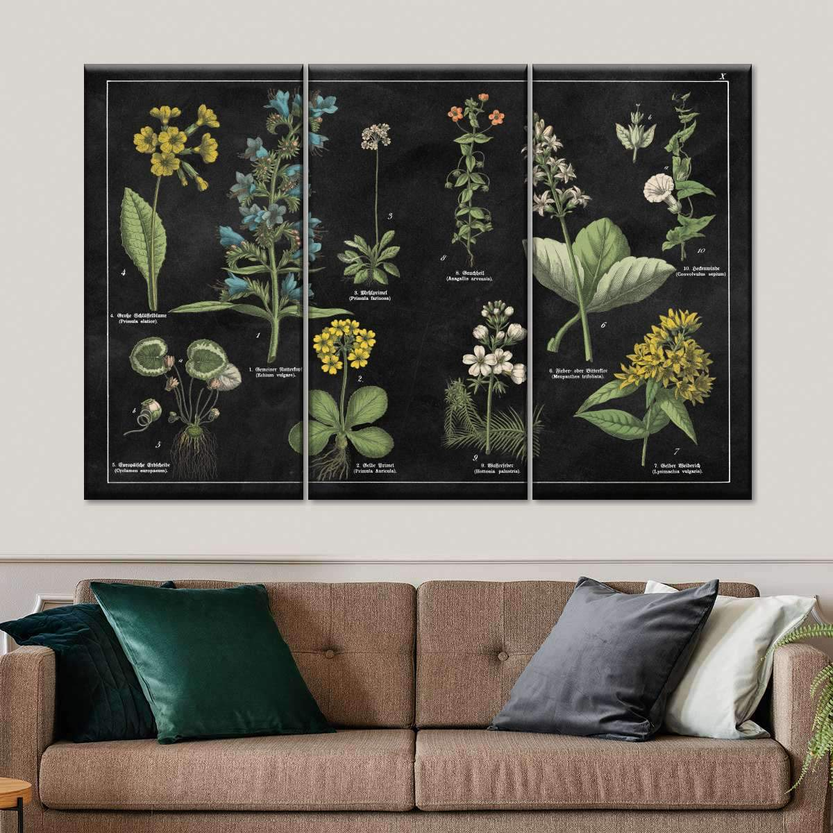 Botanical Floral Chart I Black and White Multi Panel Canvas Wall Art