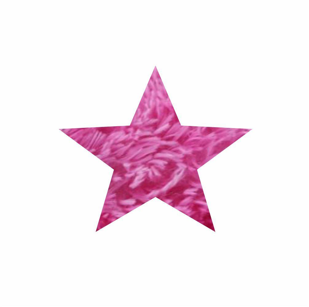 Tapete 2,50X2,50 Estrela  Para Sala  Para Salafelpudo  Cores Diversas [1357]