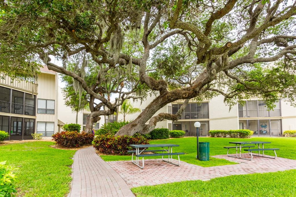 Condo 6157  MIDNIGHT PASS ROAD , SARASOTA for sale - mls# A4504790