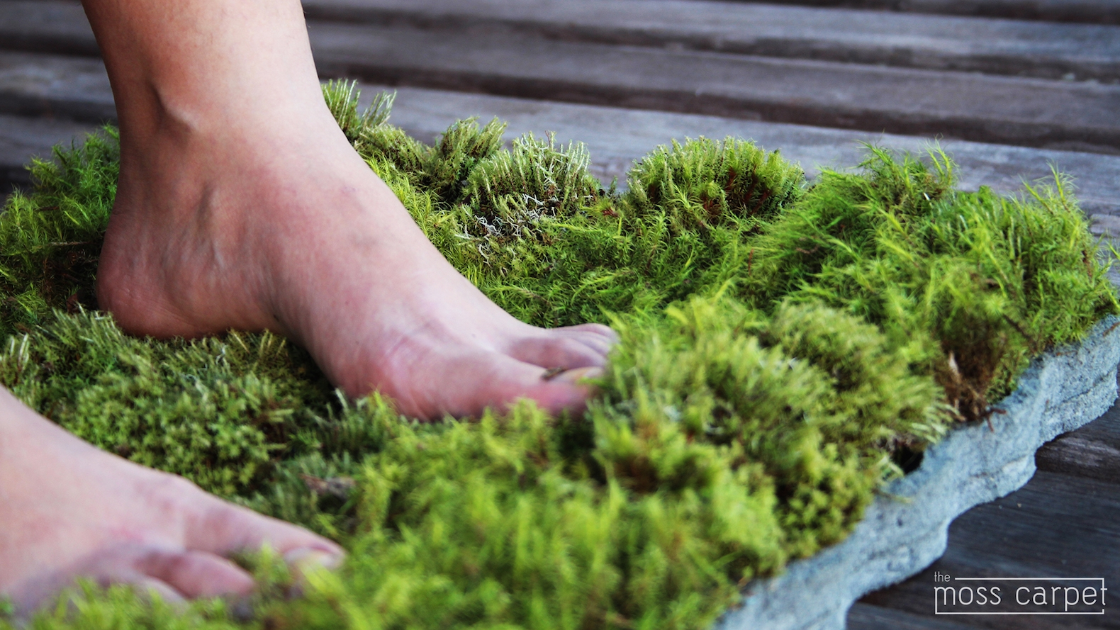 Real Live Moss Bath Mat