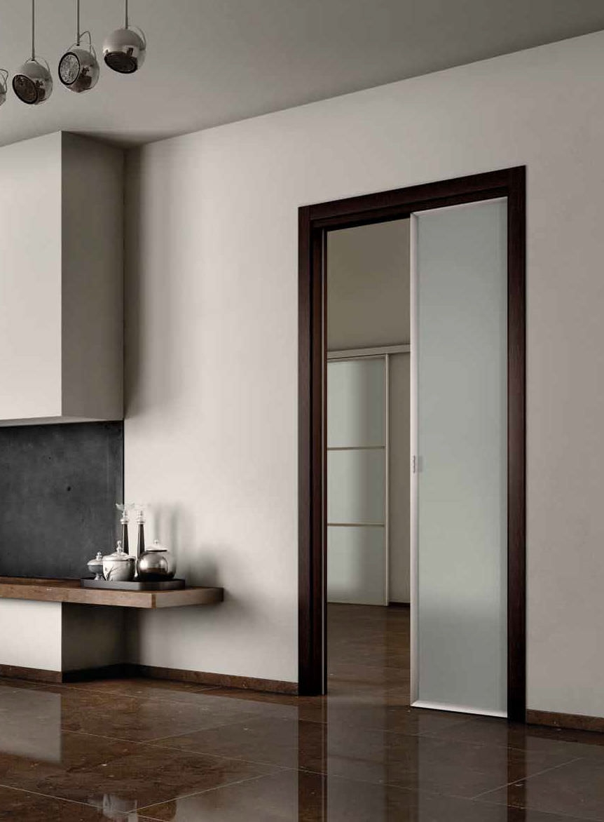 Contemporary Glass Pocket Doors